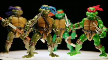 Watch Teenage Mutant Ninja Turtles. Episode 1 of Season 3.