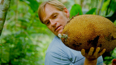 Watch Costa Rica. Episode 3 of Season 1.