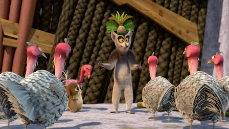 Watch The Jungle Rooster. Episode 5 of Season 4.