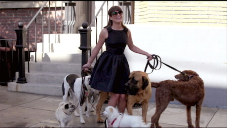 Watch Old Dog, New Tricks. Episode 19 of Season 5.