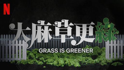大麻草更綠